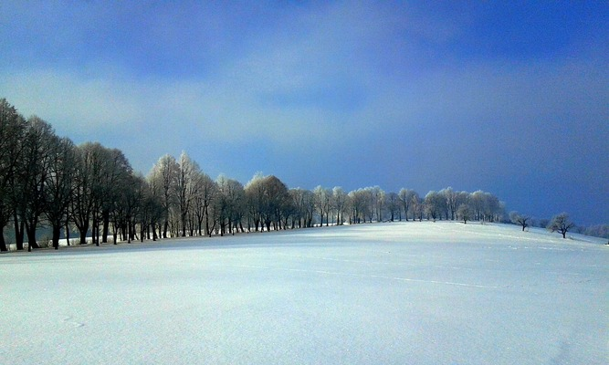 A winter landscape in the nature around Nemilkov.
